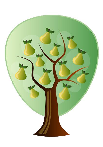 Fran Pears Learning